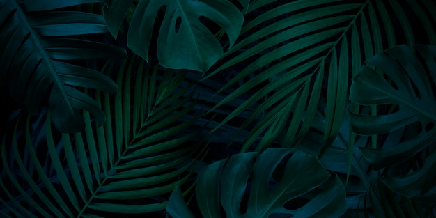 Tropical leaves background with copy space Premium Photo