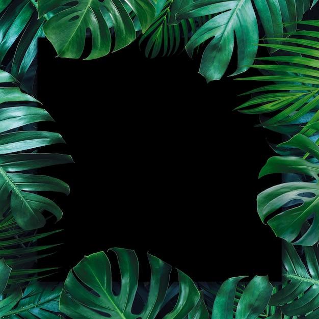 Premium Photo Tropical Leaves And Blank Paper Black Background Seamless realistic vector botanical pattern black background. https www freepik com profile preagreement getstarted 3344625