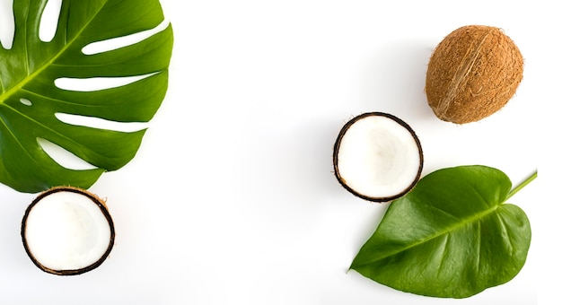Tropical leaves and coconut top view Free Photo