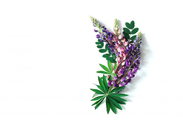 Tropical leaves and growths on a white isolated Premium Photo
