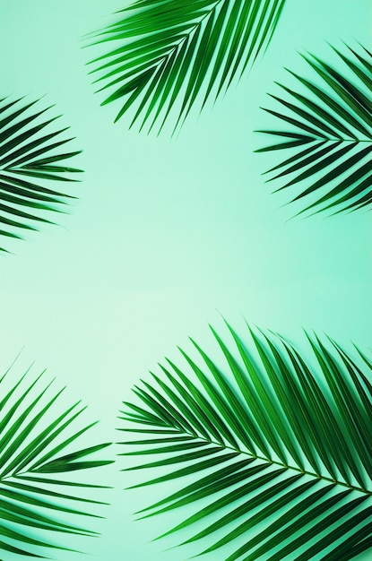 Tropical palm leaves on pastel blue background. minimal summer concept. top view green leaf on punchy pastel paper Premium Photo