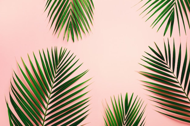 Tropical palm leaves on pastel pink background. minimal summer concept. Premium Photo