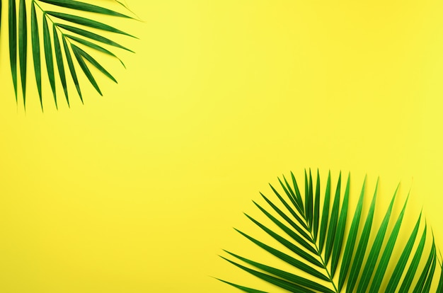 Tropical palm leaves on pastel yellow background. minimal summer concept. creative flat lay with copy space. Premium Photo