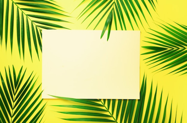 Tropical palm leaves on pastel yellow background with paper card note. minimal summer concept. green leaf on punchy pastel paper Premium Photo