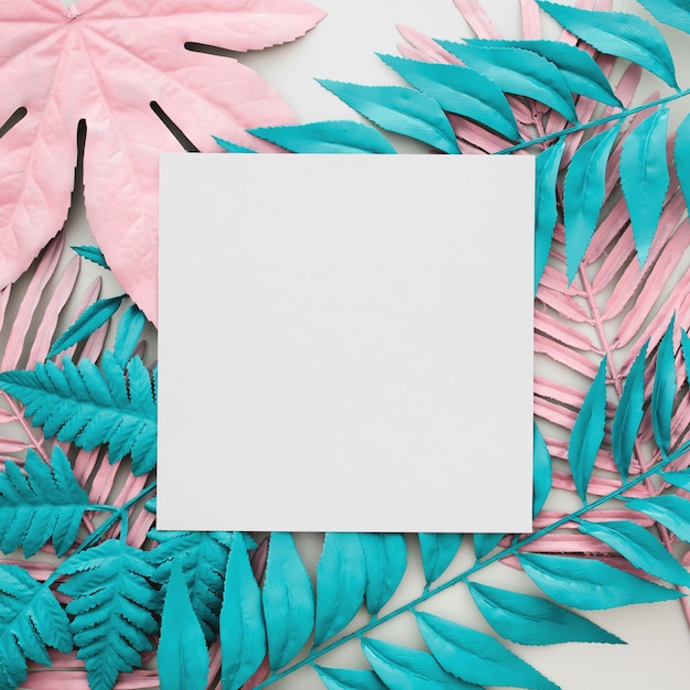 Tropical palm leaves, white paper blank on white background Free Photo