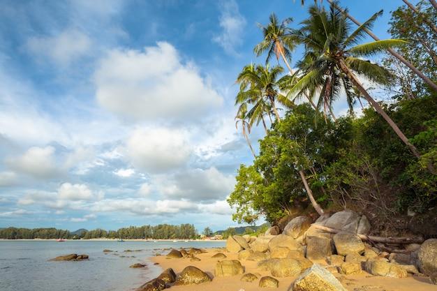 Tropical sand beach Premium Photo