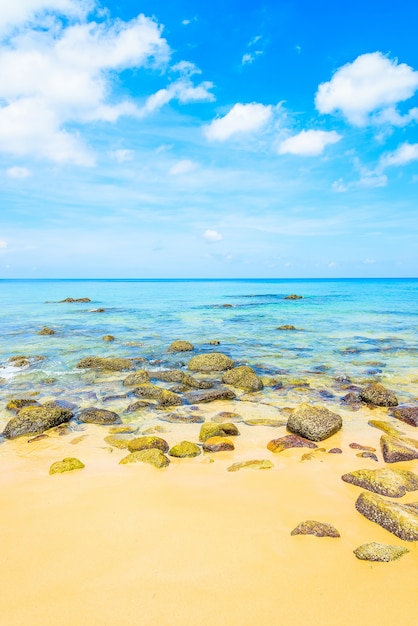 Tropical Sea Beach Free Photo
