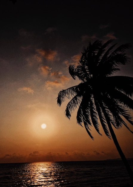 Tropical sunset scene Free Photo
