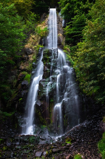 Trusetaler waterfall flowing through the forest in germany Free Photo