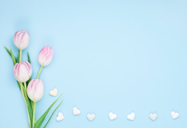 Tulip flowers with small hearts Free Photo