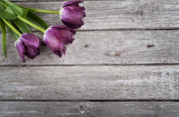 Tulips on barn wood background Premium Photo