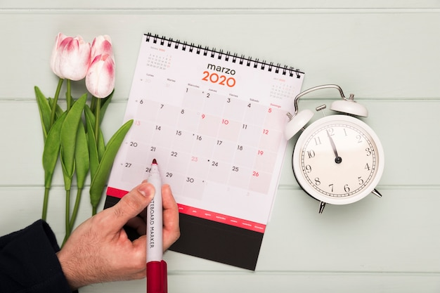 Tulips bouquet beside clock and calendar Free Photo