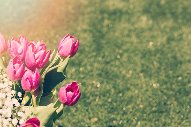 Tulips bouquet outdoors Free Photo