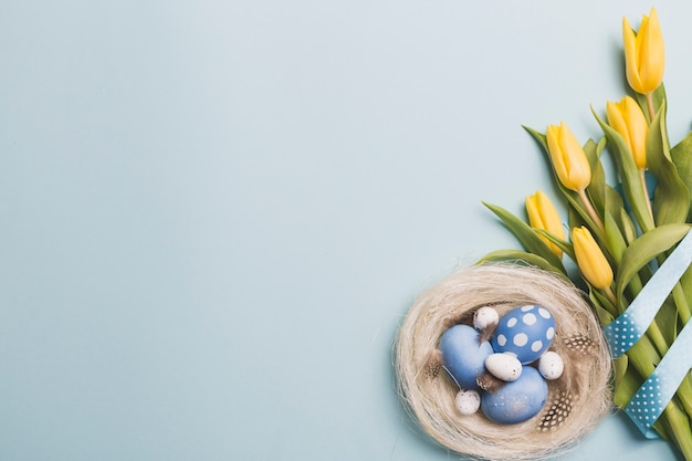 Tulips near nest with colored eggs Free Photo