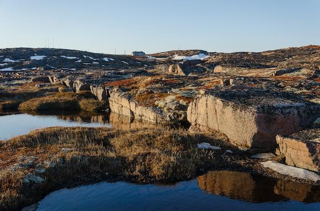 Tundra landscape at barents sea in teriberka , murmansk, russia Premium Photo