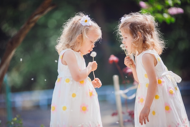 The twins girls  blowing  dandelions Free Photo