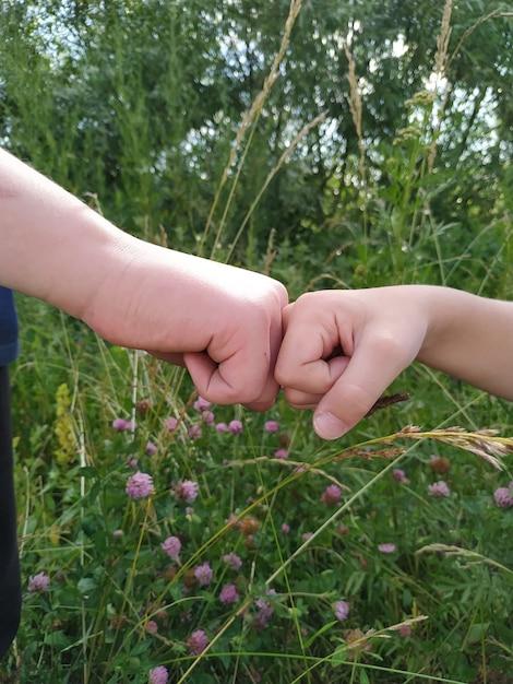 自然の中で握手する2つの男の子の手 Premium写真