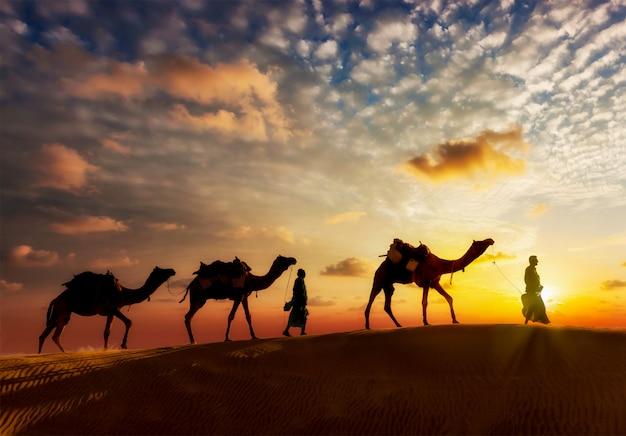 タール砂漠の砂丘にラクダを持つ2人のラクダラクダドライバー Premium写真