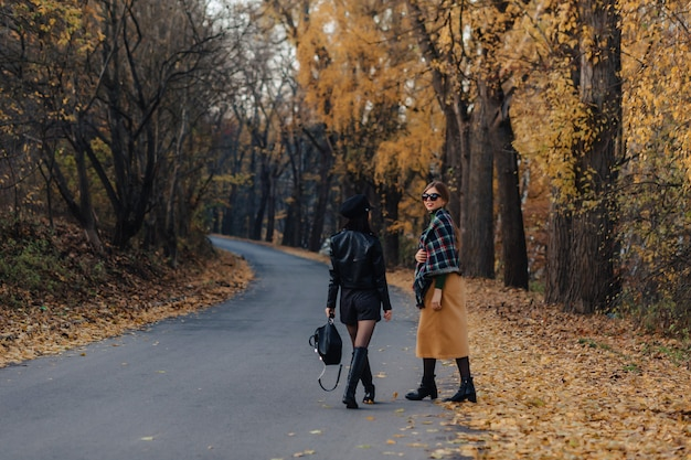 Two cozy smiling young girls walk at autumn park road Premium Photo