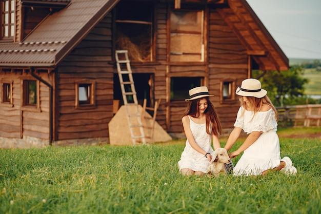 Благоустройство загородного дома сделает жизнь в нем намного комфортнее и безопаснее