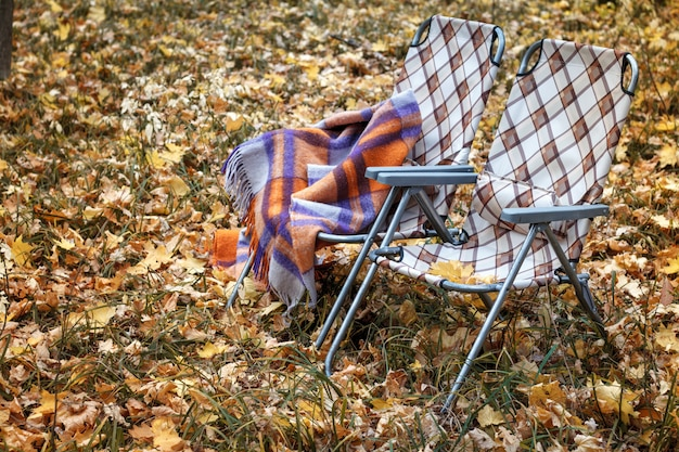 Two folding sun loungers and a warm woolen plaid in the forest in autumn among the fallen foliage Premium Photo