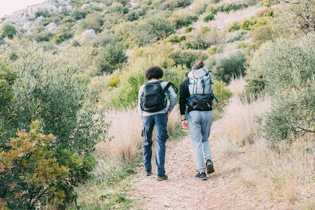 Two friends hiking together Free Photo