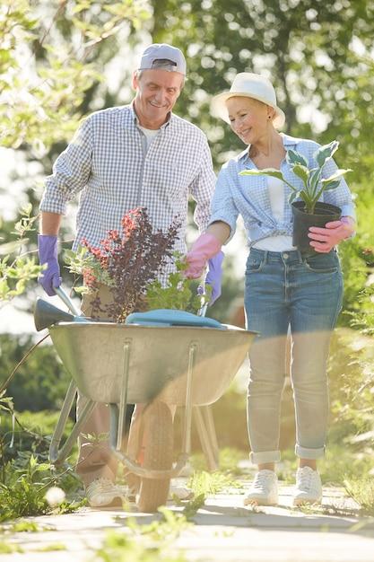 Two gardeners in sunlight Premium Photo