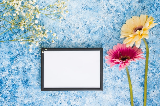 Two gerbera flowers with blank frame Free Photo