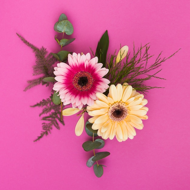 Two gerbera flowers with branches on table Free Photo
