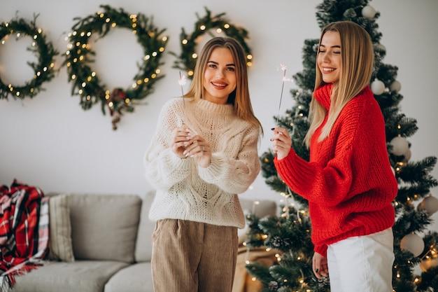 크리스마스를 축 하하는 두 여자 친구 무료 사진