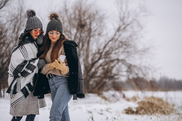 Two girls walking together in a winter park and doing selfie Free Photo