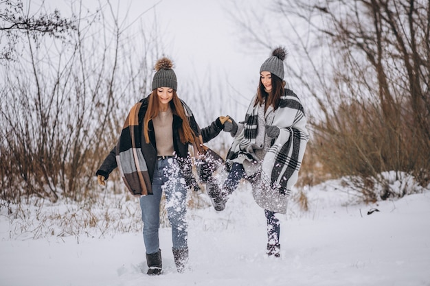 Two girls walking together in a winter park Free Photo