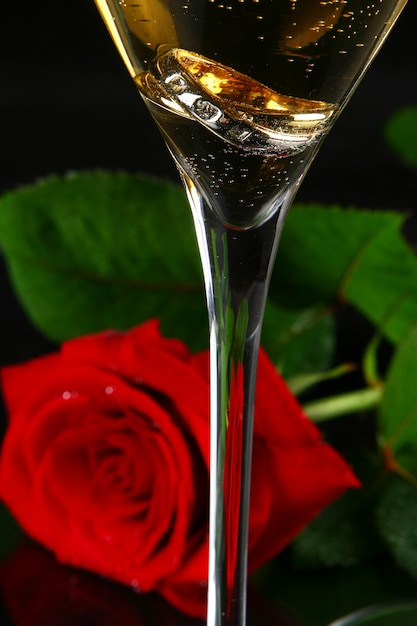 Two glasses of champagne and rose Free Photo