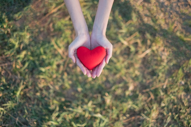 Two hands holding red heart with green grass background. Premium Photo