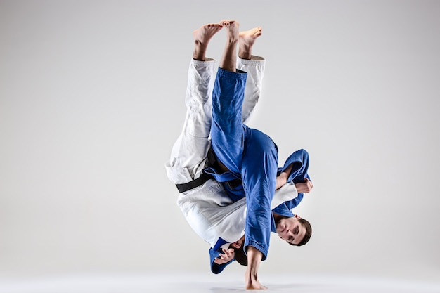 The two judokas fighters fighting men Free Photo
