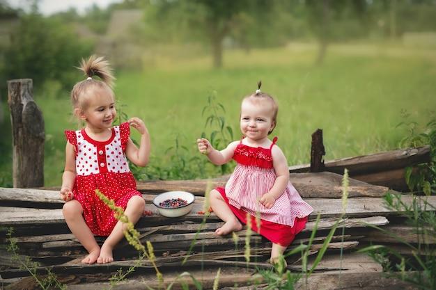 2人の妹が座ってブルーベリーを食べています Premium写真