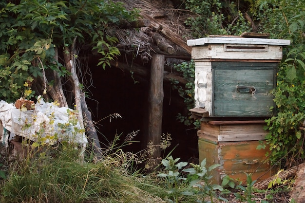 Two old wooden closed beehives Premium Photo