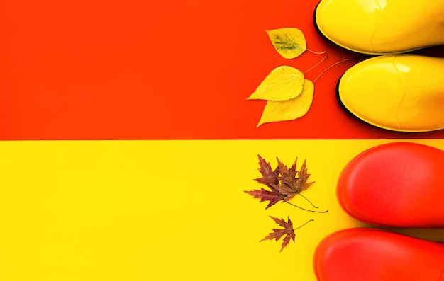 Two pairs of bright rubber boots-red and yellow are on a contrasting background and in front of them are autumn leaves Premium Photo