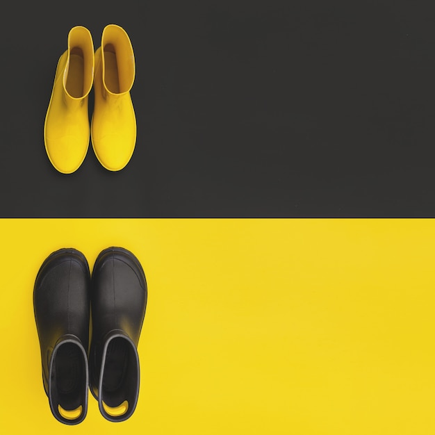 Two pairs of gumboots Premium Photo