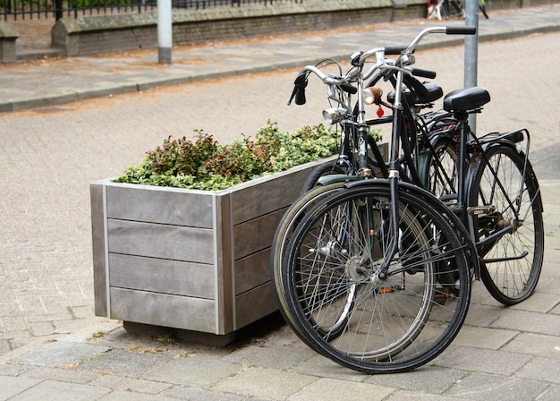 Two parked bicycles on the street in dutch city Premium Photo