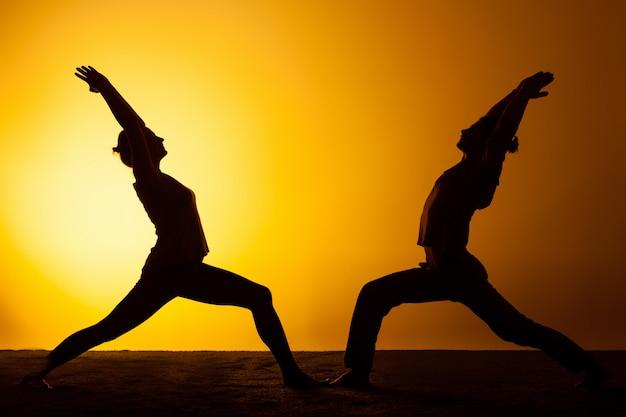 夕日の光の中でヨガを練習する2人 無料写真