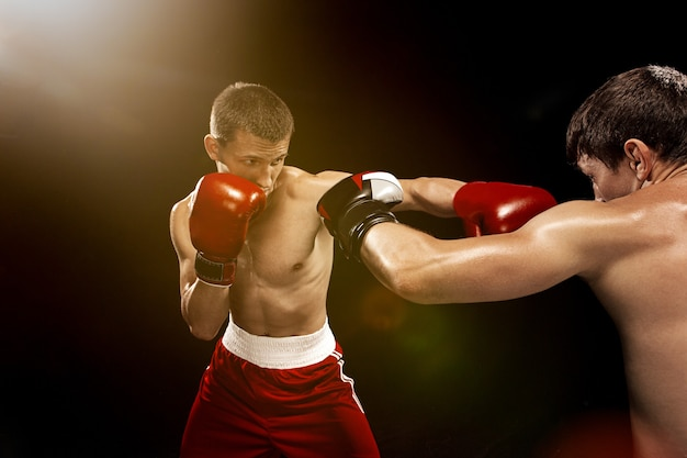 Two professional boxer boxing on black wall Free Photo