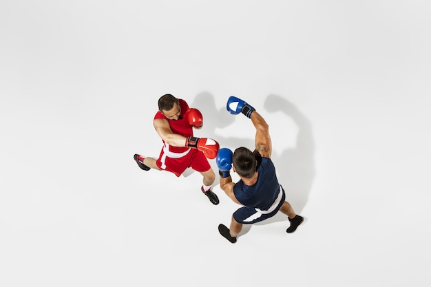 Due pugili professionisti boxe isolati su sfondo bianco studio, azione, vista dall'alto. coppia di atleti caucasici muscolosi in forma combattimenti. Foto Gratuite