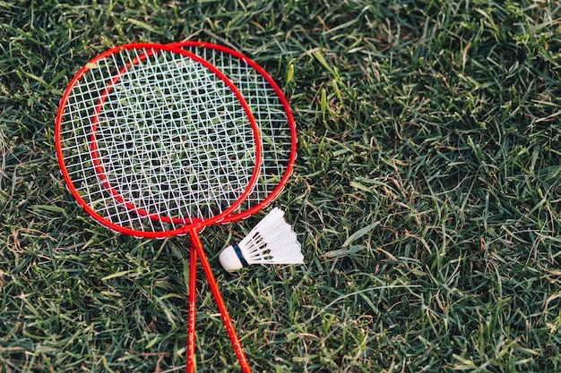 Two red badminton and shuttlecock on green grass Free Photo
