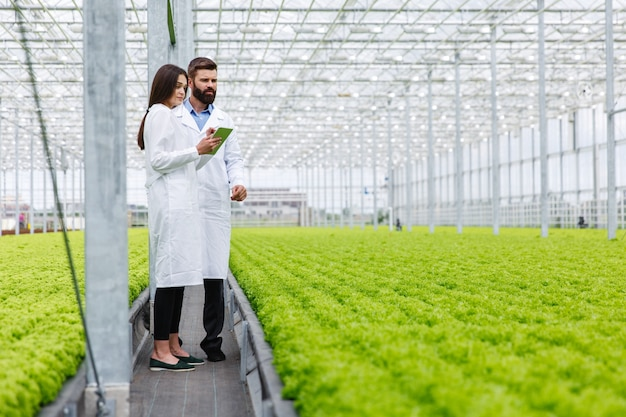 Two researches man and woman examine greenery with a tablet in an all white greenhouse Free Photo