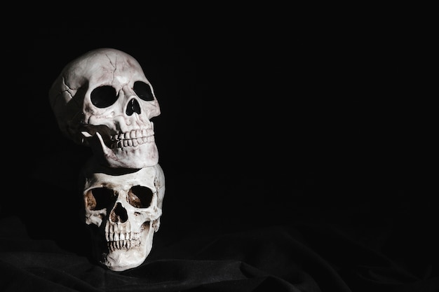 Two stacked highlighted skulls Free Photo