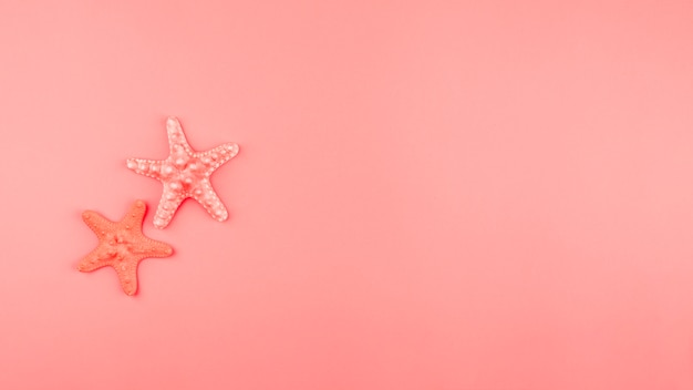 Two starfish on the coral background with copy space Free Photo