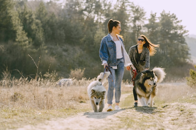 Two stylish girls in a sunny field with dogs Free Photo