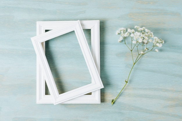 Two white border frames with baby's-breath flower on texture wooden backdrop Free Photo