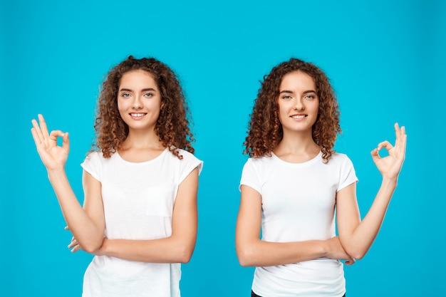 青の上で大丈夫を示す笑顔の2つの梨花の双子。 無料写真